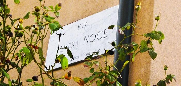 Milano.ViaTeresaNoceFedericoFerme (1)