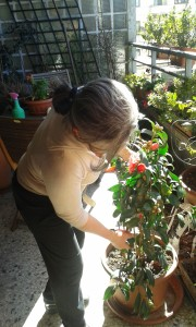 donne italiane-dols-donne-giardiniere