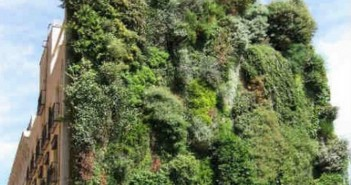 giardino pensile-oasi naturale