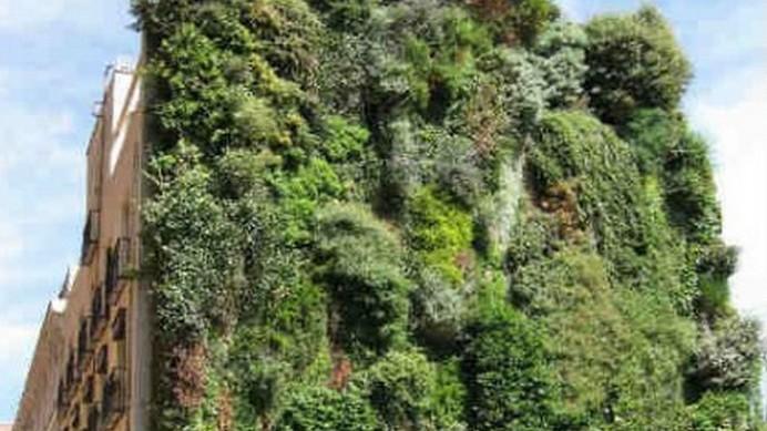 Giardini pensili oasi naturale