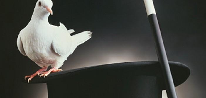 colomba-cappello-prestigitore