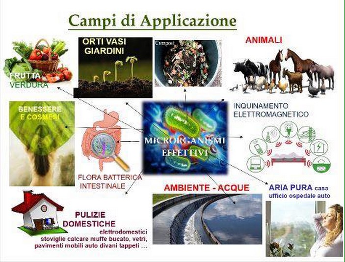 campi-applicazione
