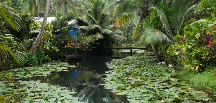Tahiti_Teahupoo_le Village_stagno