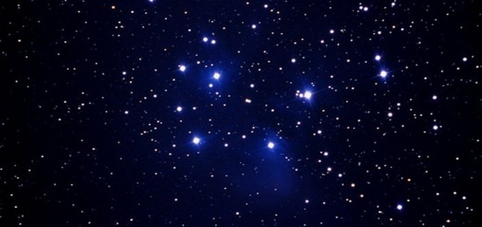 star -sons