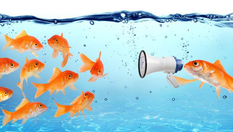 palestra-della-comunicazione-la-comunicazione-assertiva-centro-phoenix-2-760x430