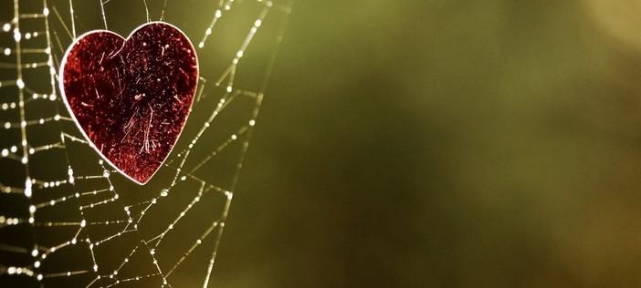 amore sul web